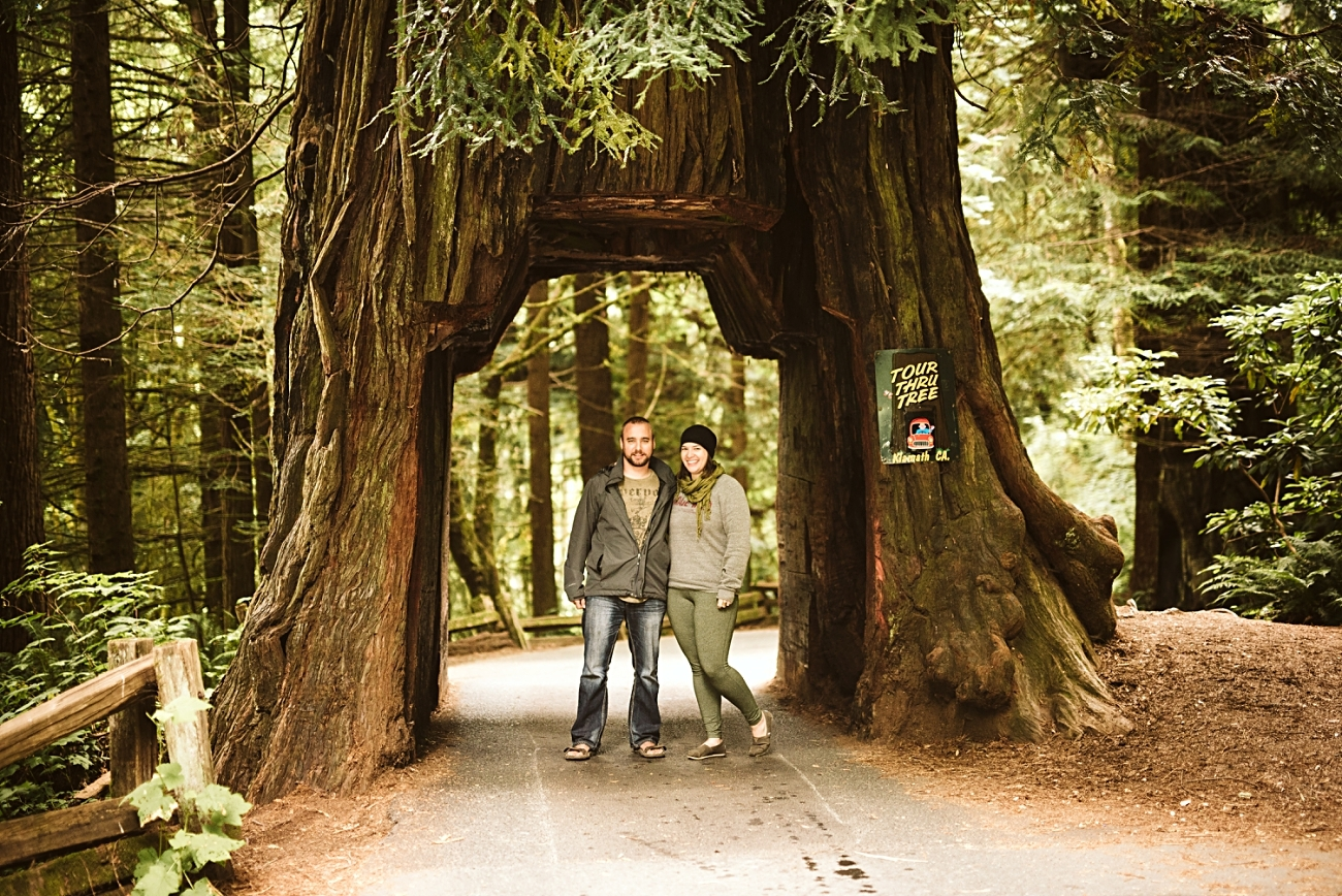 Drive through tree in Redwoods, Camping in Redwoods National Park, Redwoods Travel Guide, Travel Photographer