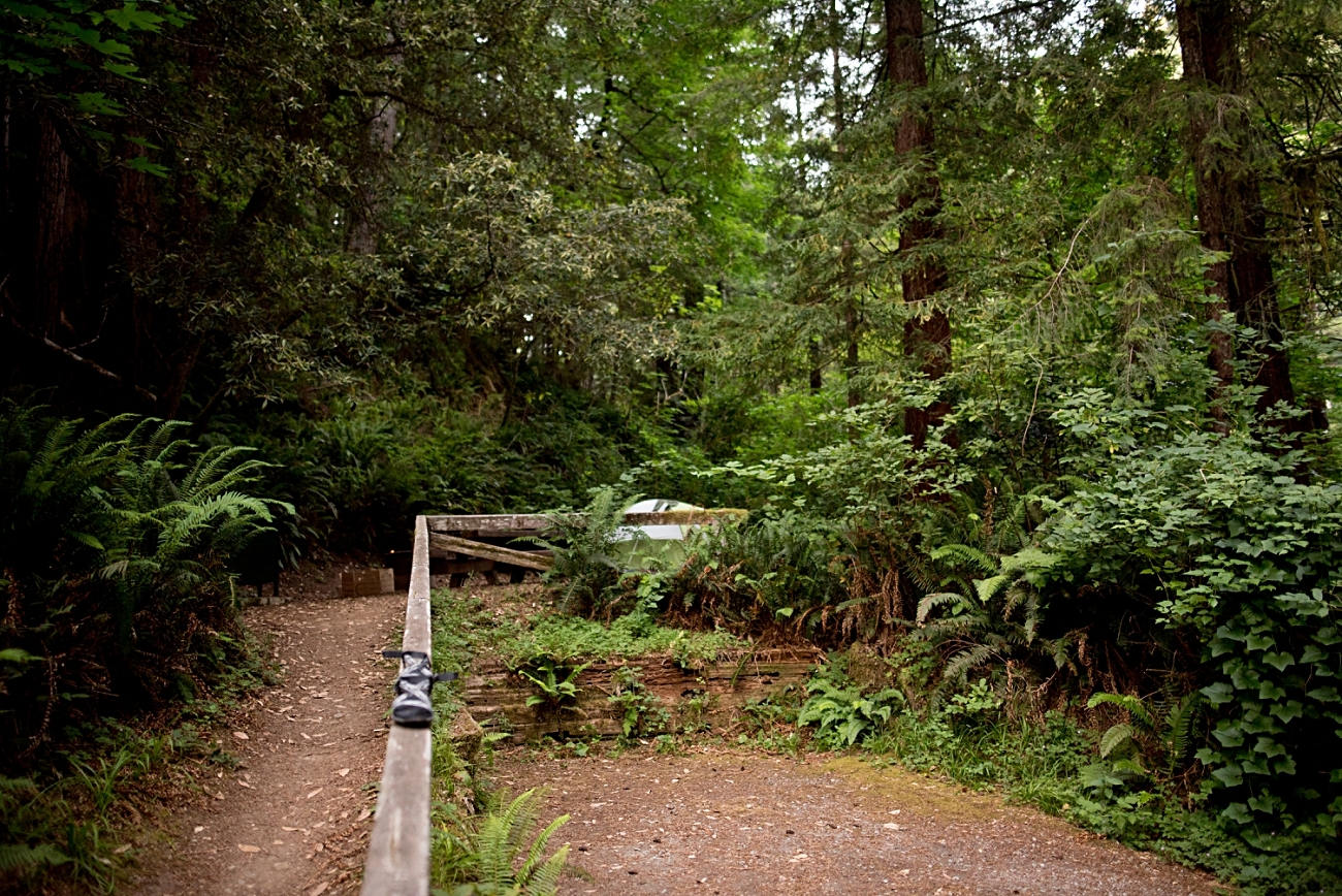 Best Hikes in the Redwoods, Camping in Redwoods National Park, Redwoods Travel Guide, Travel Photographer