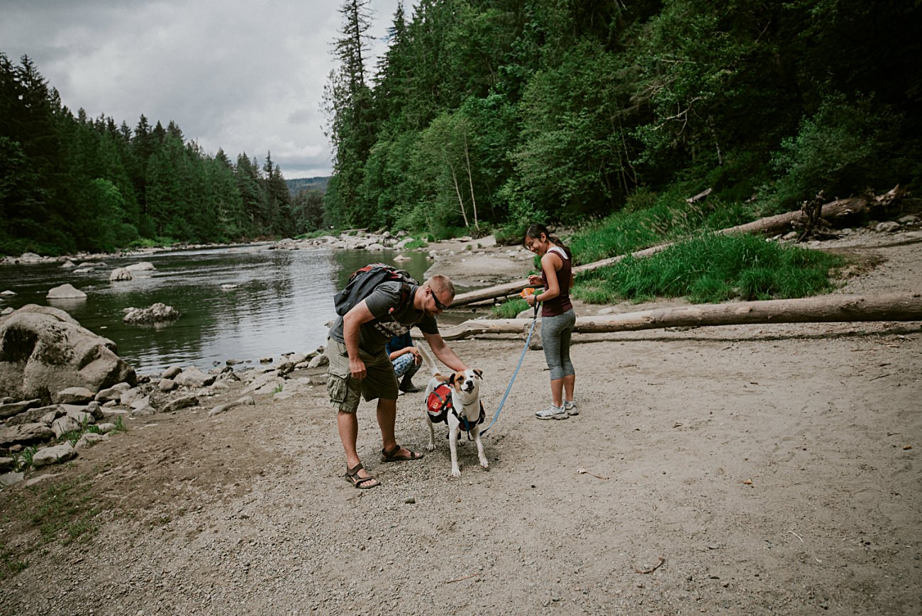snoqualmie falls, Seattle WA Travel Guide, Dog Lovers