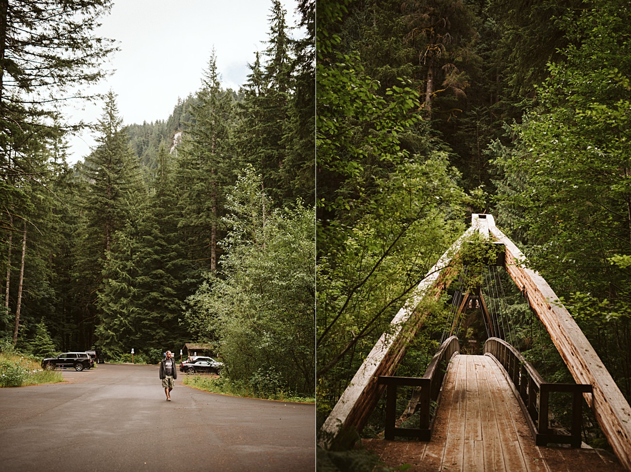 Olympic National Park Print, Travel Guide