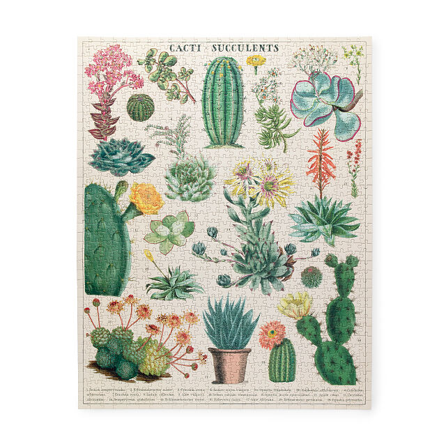 Unique gifts for the plant lover
