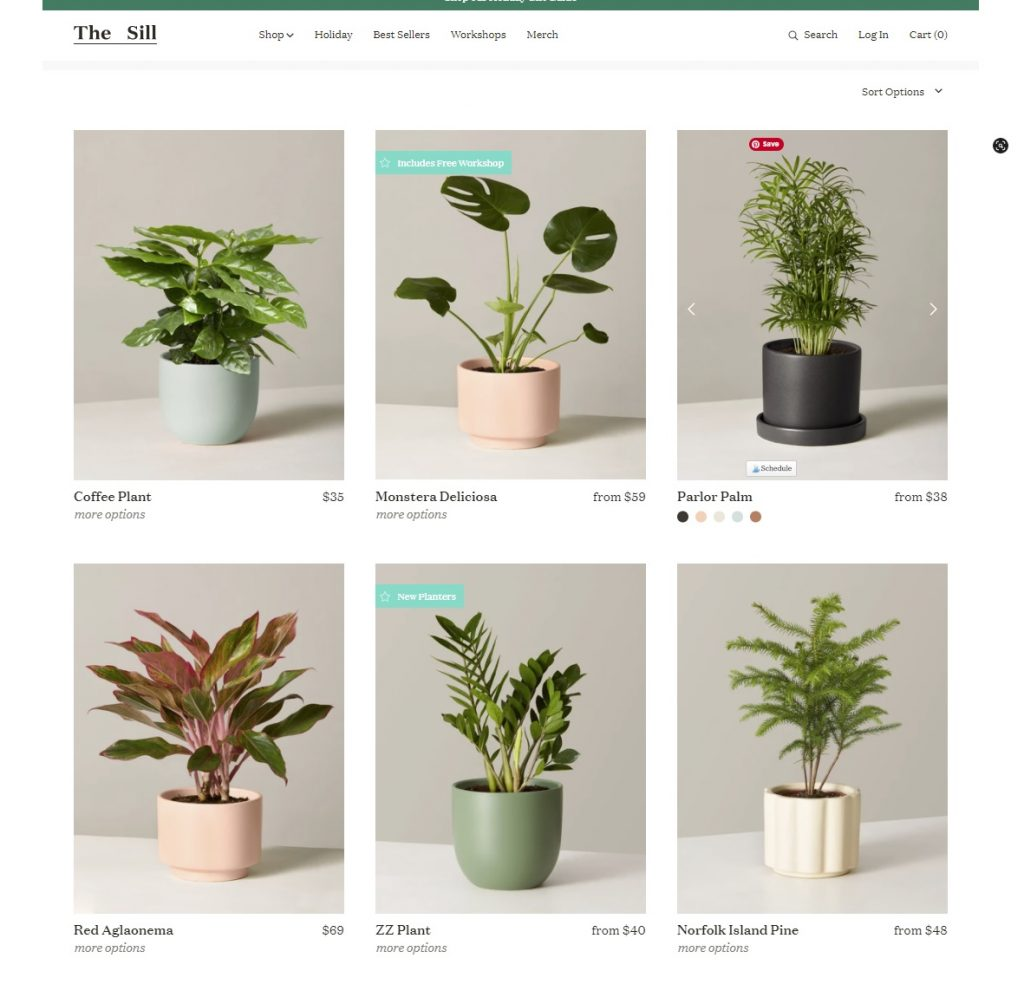 Online shop for gifts for plant lovers